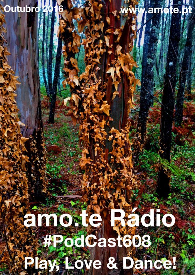 608-amo-te-radio
